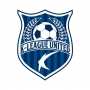 Artwork for Should the K League be Decided by Playoffs?