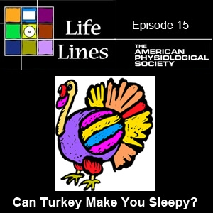 Episode 15: Can Turkey Make You Sleepy?