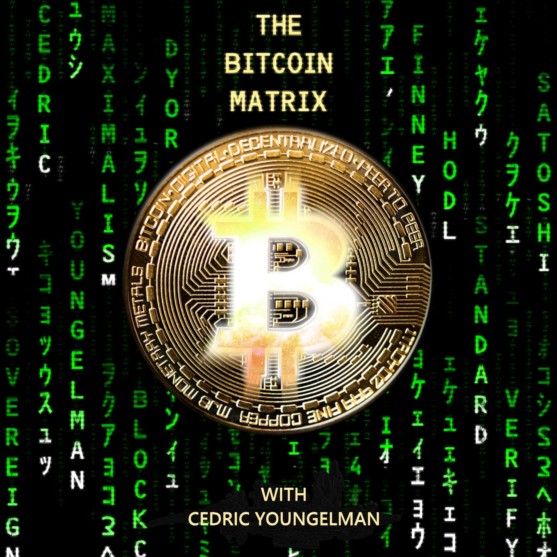 The Bitcoin Matrix show art