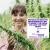 Republican Senator Reintroduces a Bill to Modify the Legal THC Limit for Hemp Crops | TRICHOMES Morning Buzz show art