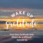 Artwork for #59 - How Does Gratitude Help When Life is Difficult?