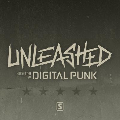 Digital Punk - Unleashed show image