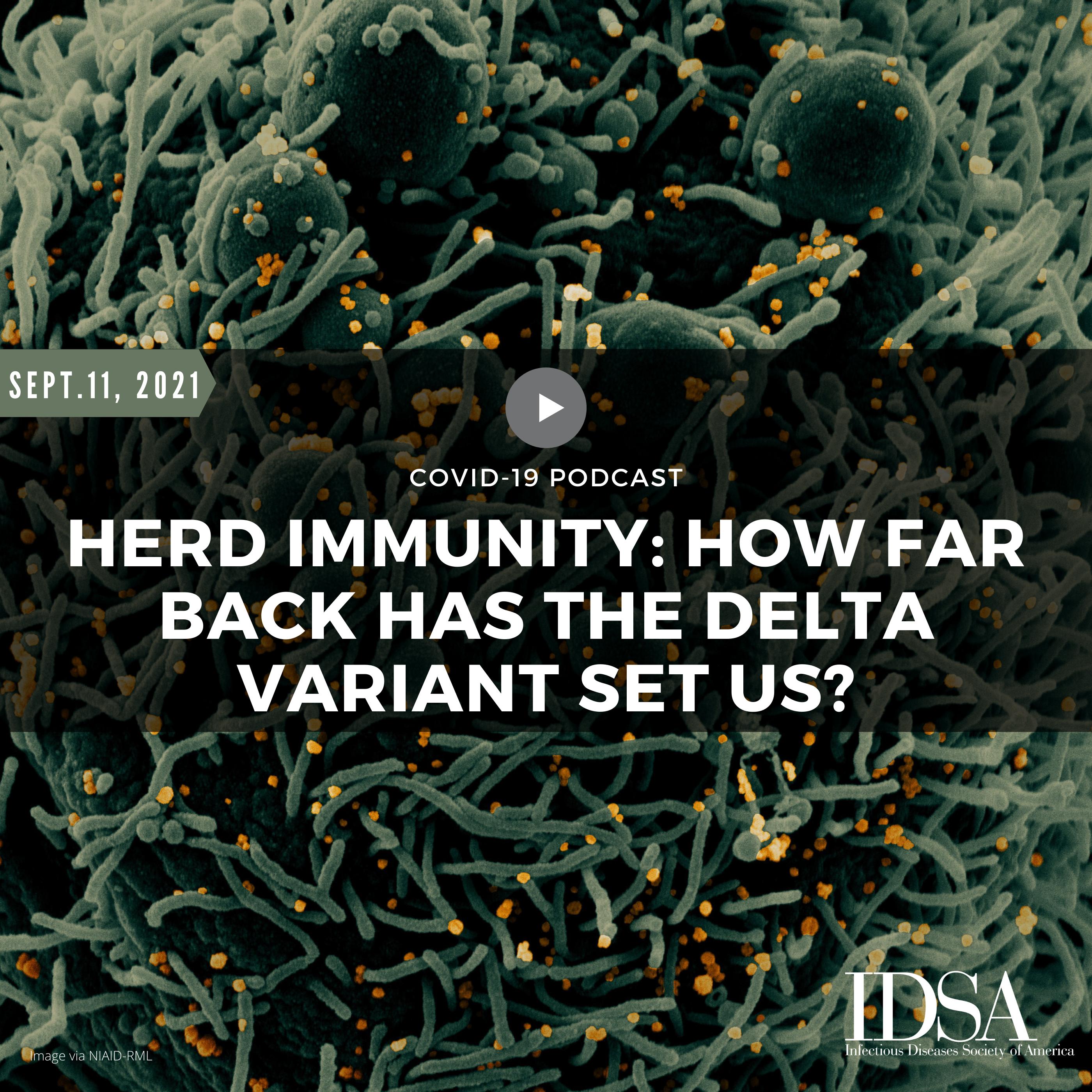 Herd Immunity: How Far Back Has the Delta Variant Set Us?
