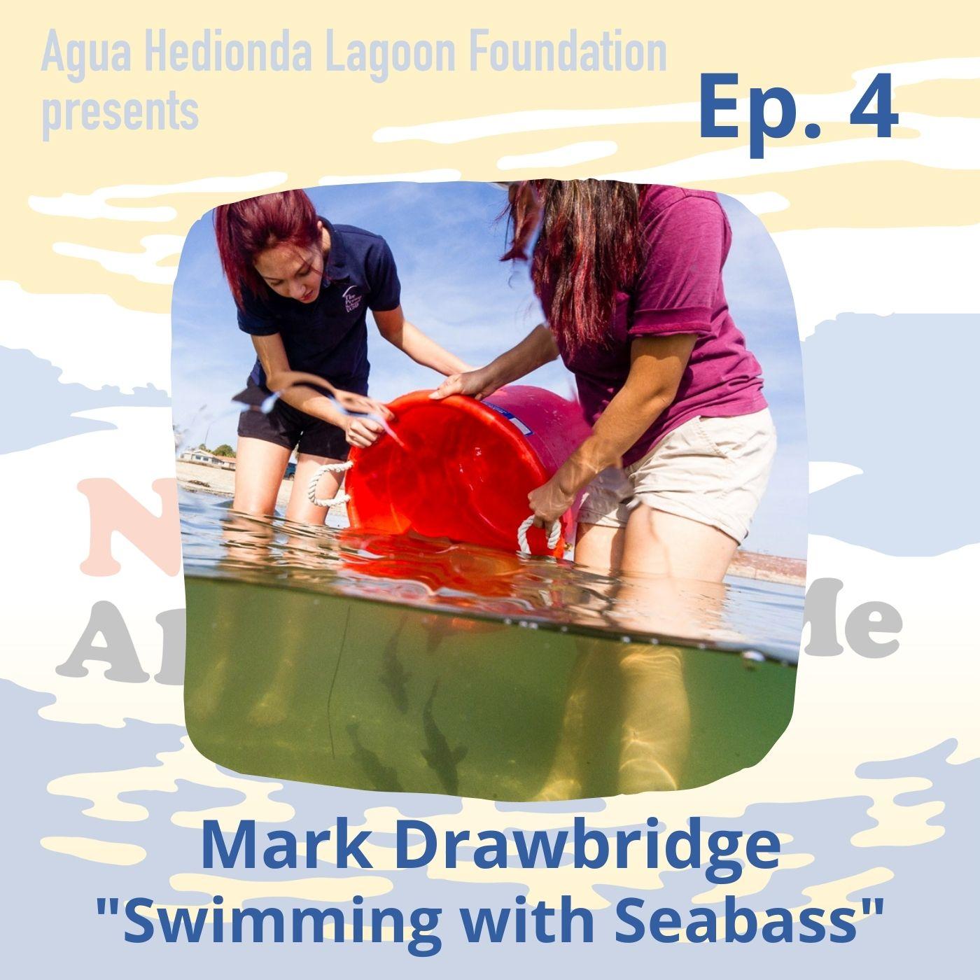 Ep. 4 Mark Drawbridge: Swimming with Seabass