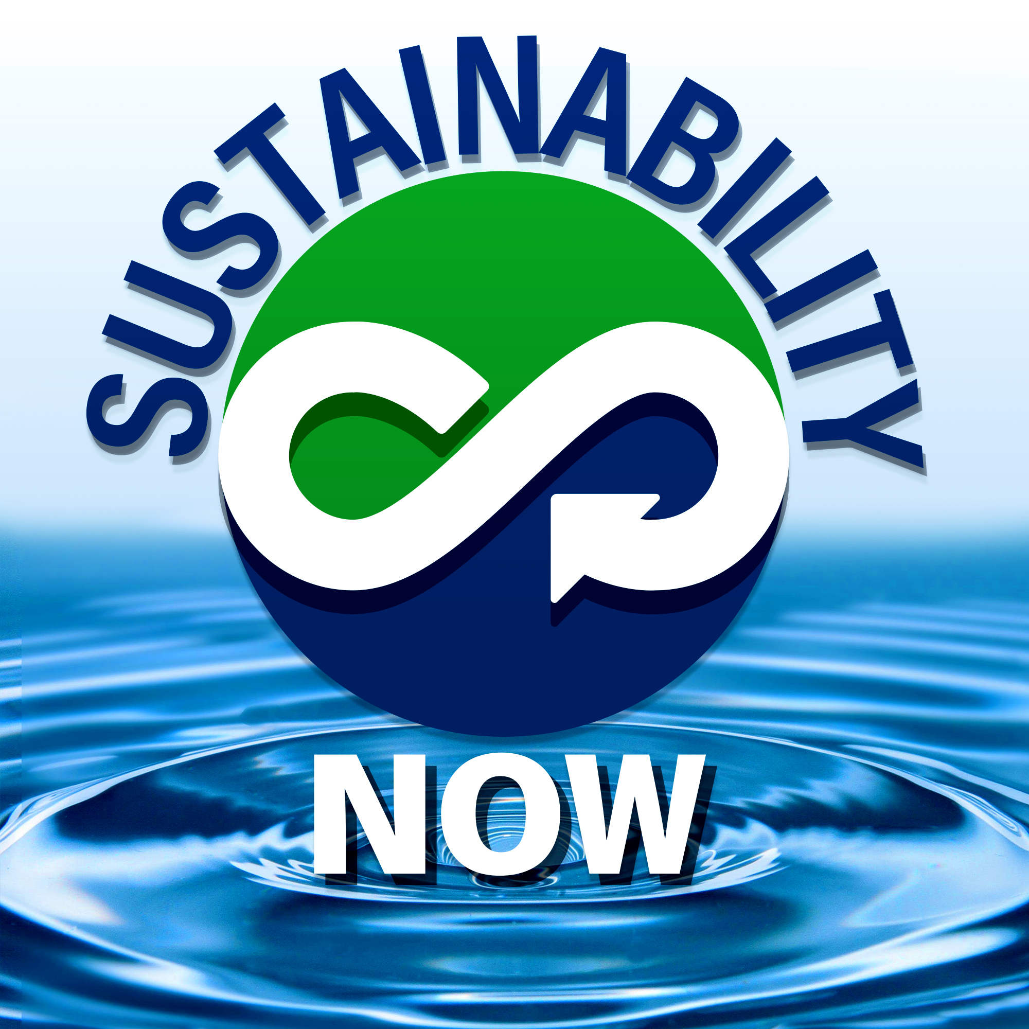 Sustainability Now - exploring technologies and paradigms to shape a world that works show art