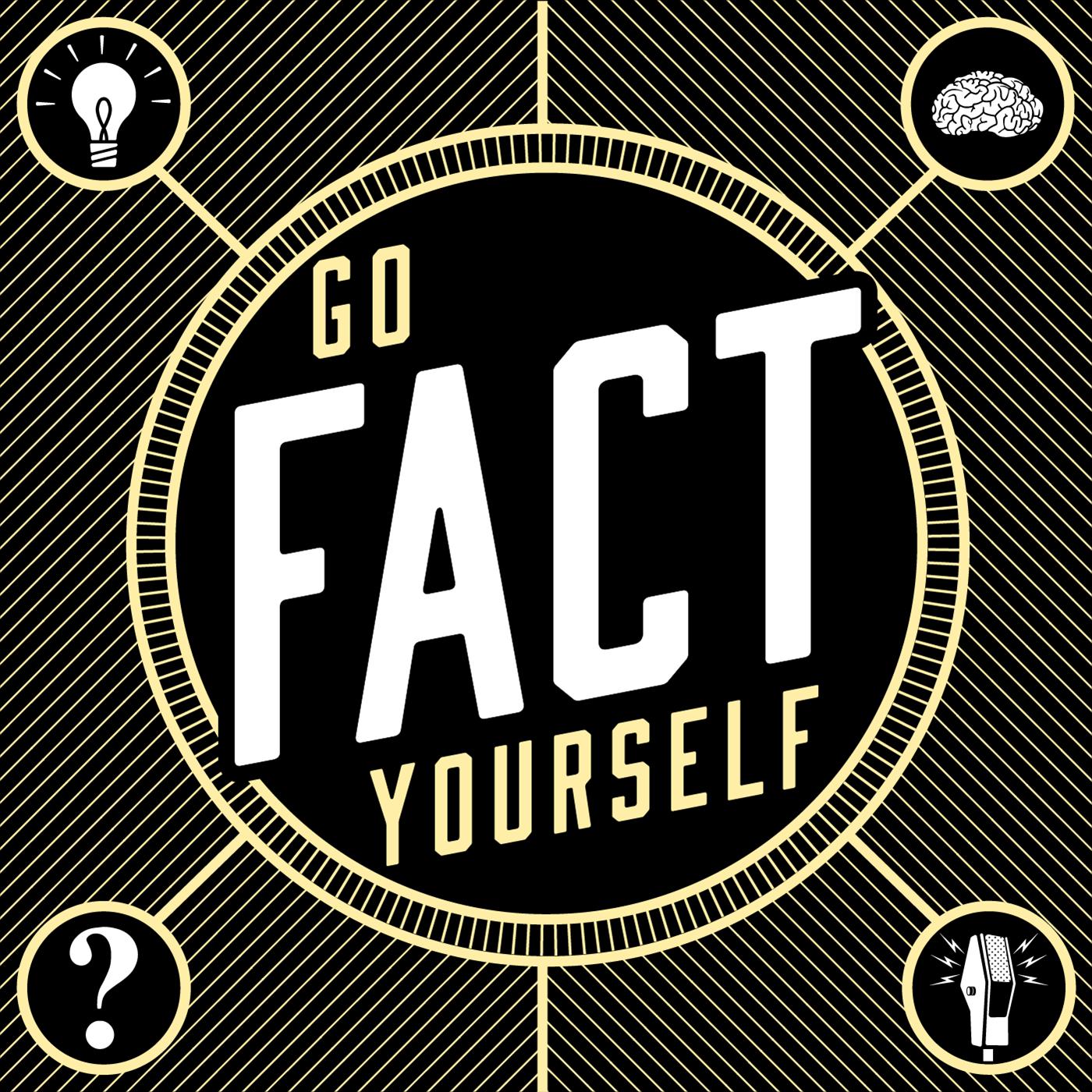 Go Fact Yourself show art