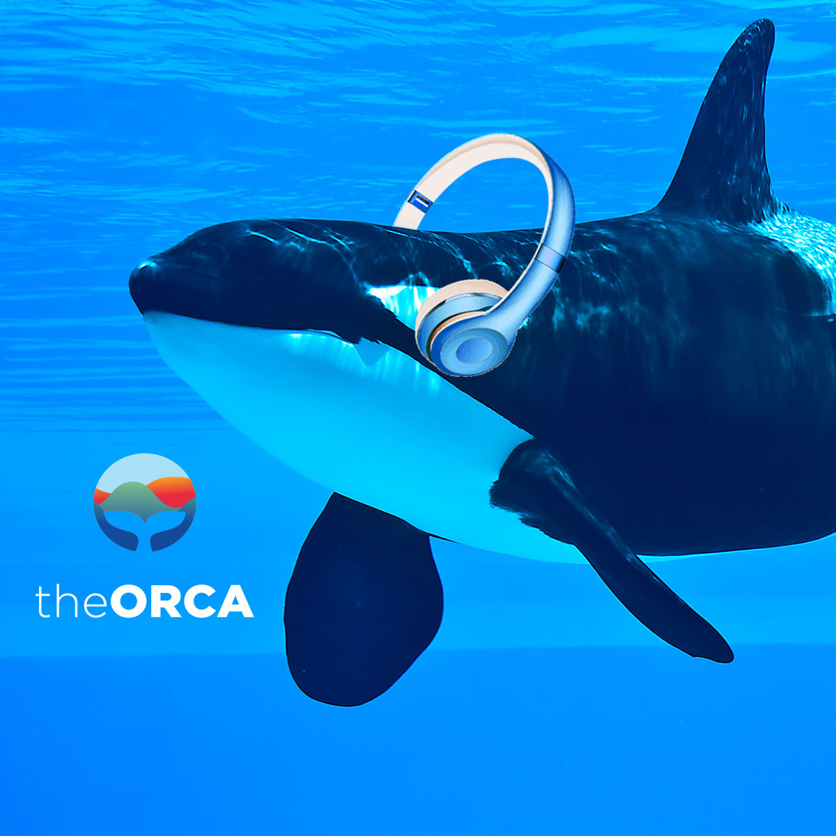 The Orca Podcasts show art