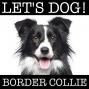 Artwork for 002 Bewusstsein über Mensch und Border Collie