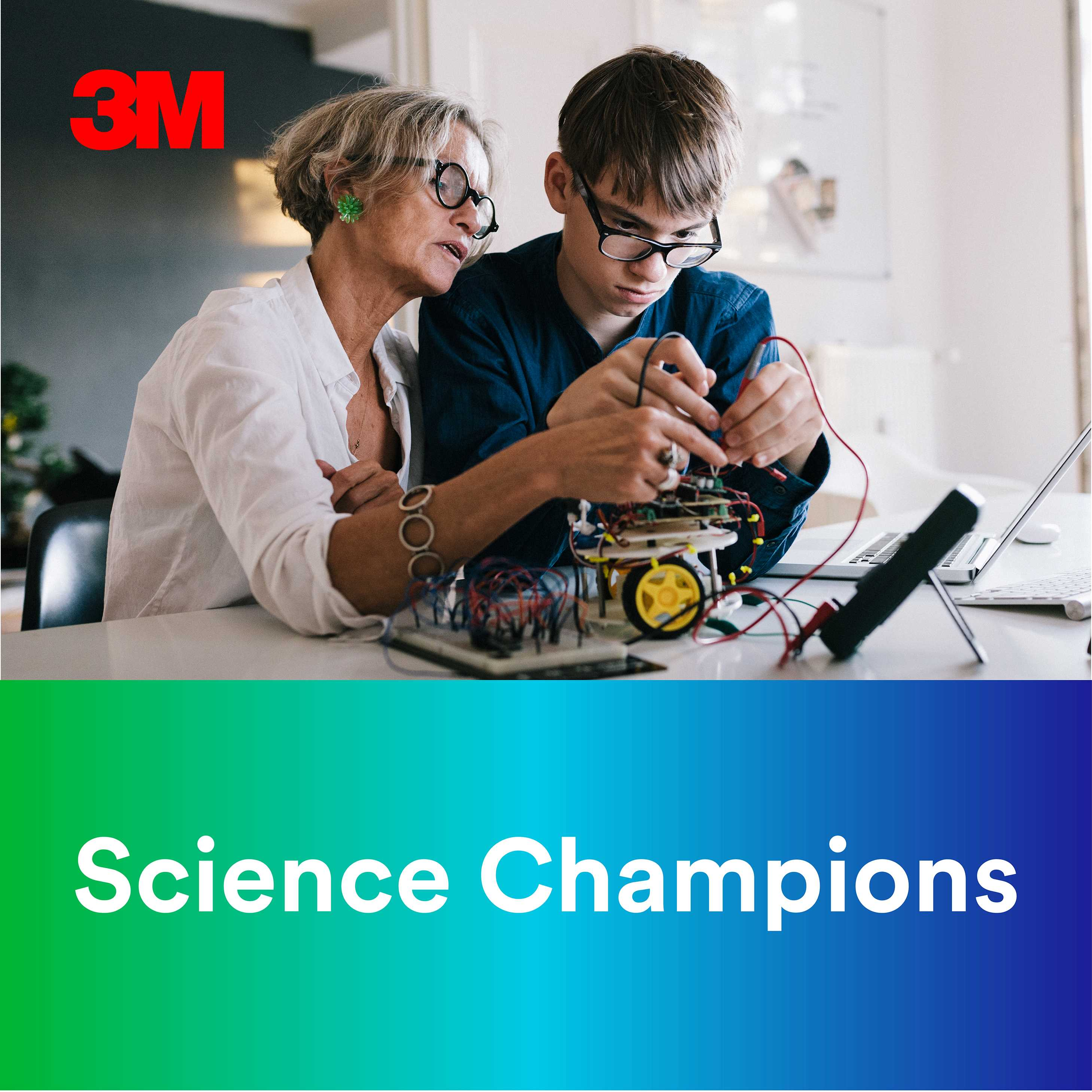 Science Champions show art