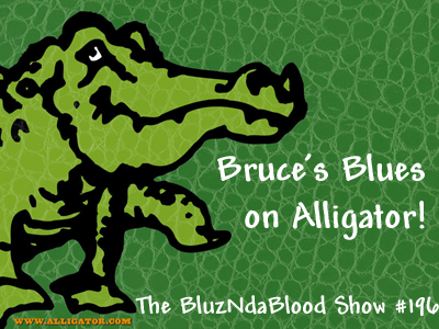 The BluzNdaBlood Show #196, Bruce's Blues on Alligator!