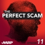 Artwork for A Scammer Tells All