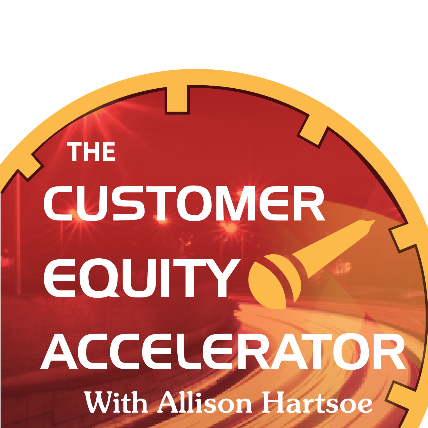 Customer Equity Accelerator show art
