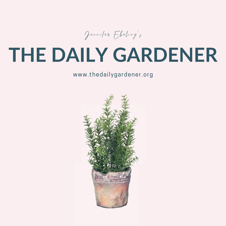 The Daily Gardener show art
