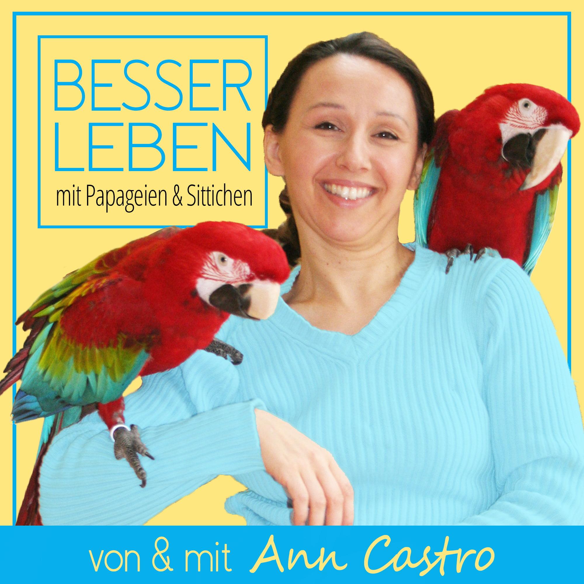 Besser Leben mit Papageien & Sittichen show art