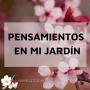 Artwork for Entrevista a una mujer valiosa: Fina Ayllón. Formadora holista en cuidados integrales.
