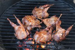Recipes of the Week: The Joys of Mesquite - Tequila Lime Quail and Grilled Pork Tacos
