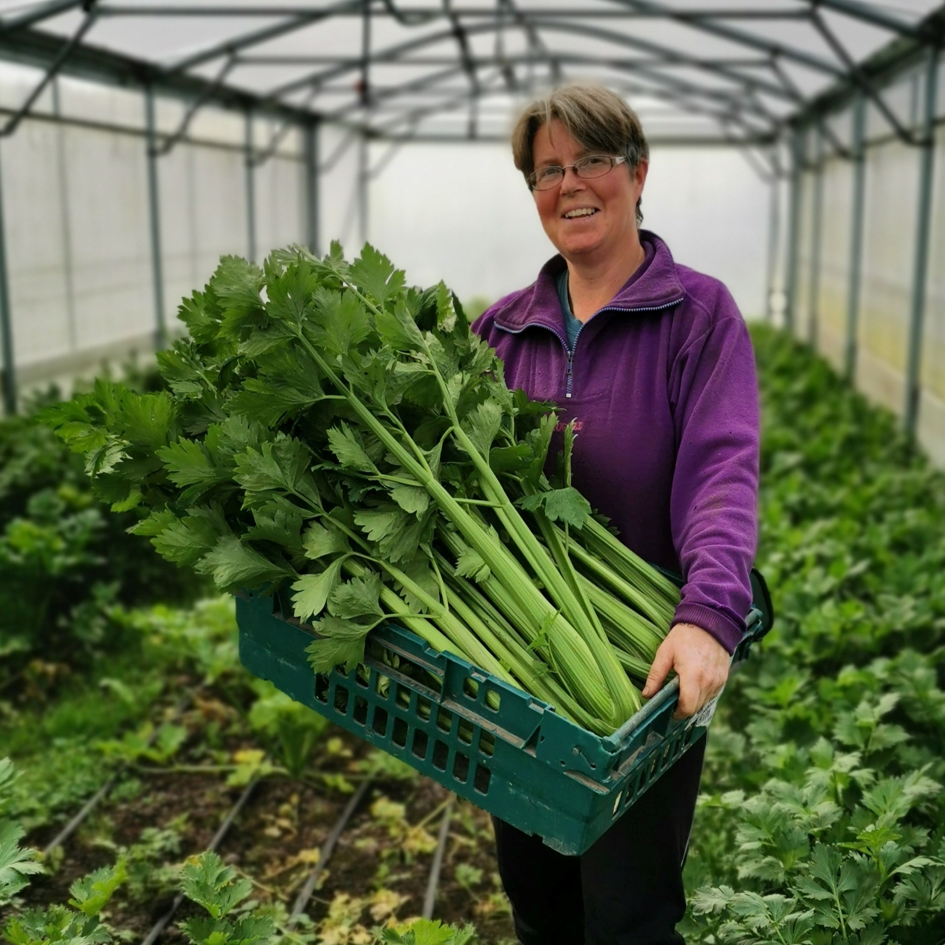 Agricology in the Field - Wendy Seel