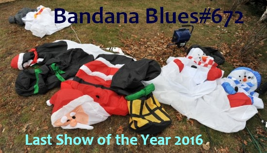 Bandana Blues #672 Happy New Year