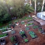 Artwork for Dream Gardeners