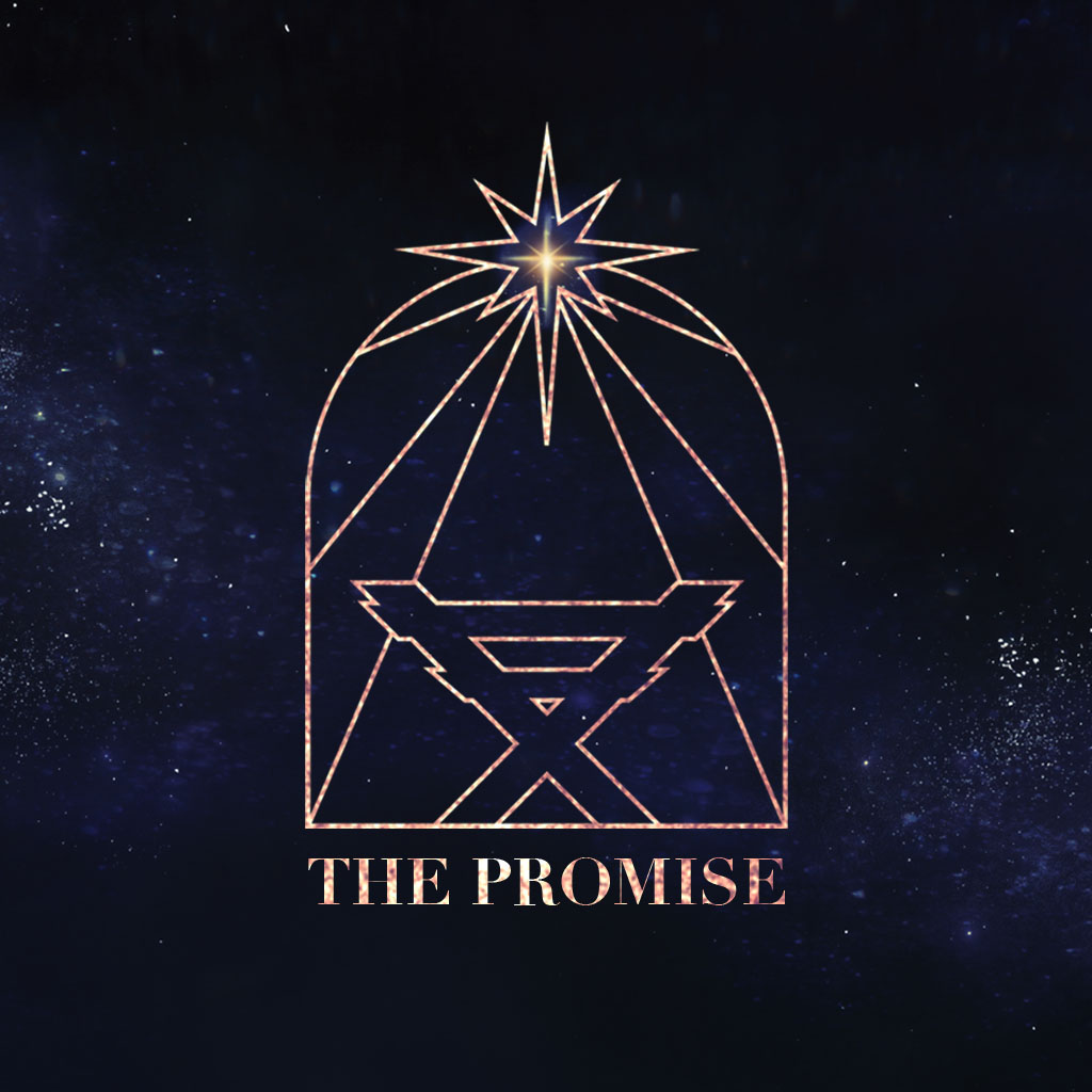 The Promise: Part 5 - Ryan Robinson show art