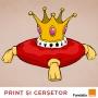 Artwork for Prinț și cerșetor