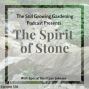 Artwork for SG588: How to Creatively Use Stone in the Landscape with Jan Johnsen