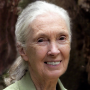 Artwork for Jane Goodall on being proven right that animals have personalities, and more