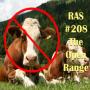 Artwork for RAS #208 - The Open Range