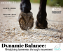 Artwork for Dynamic Balance: Rehabbing Lameness Through Movement with Krista Jones and Steven Leigh