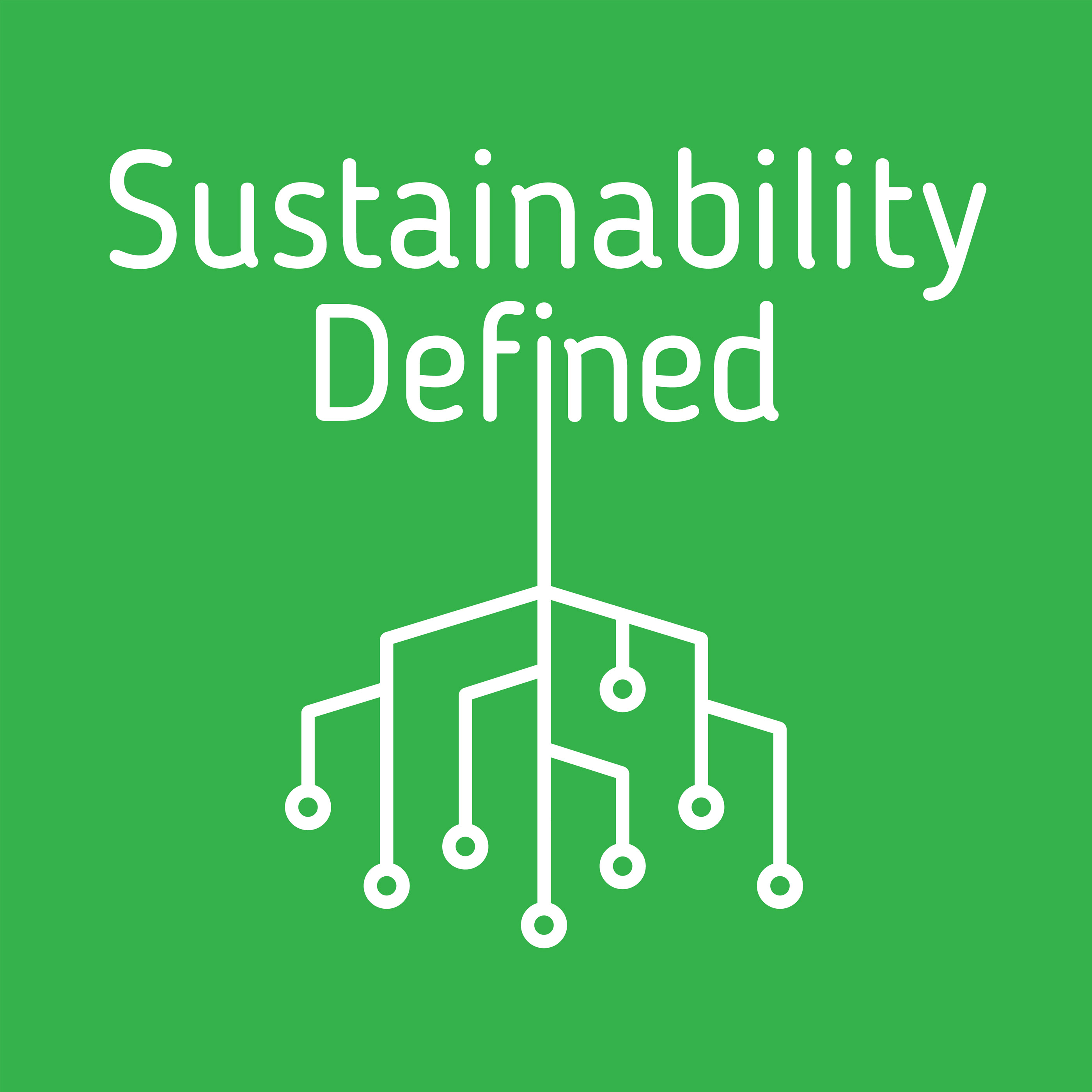 Sustainability Defined show art