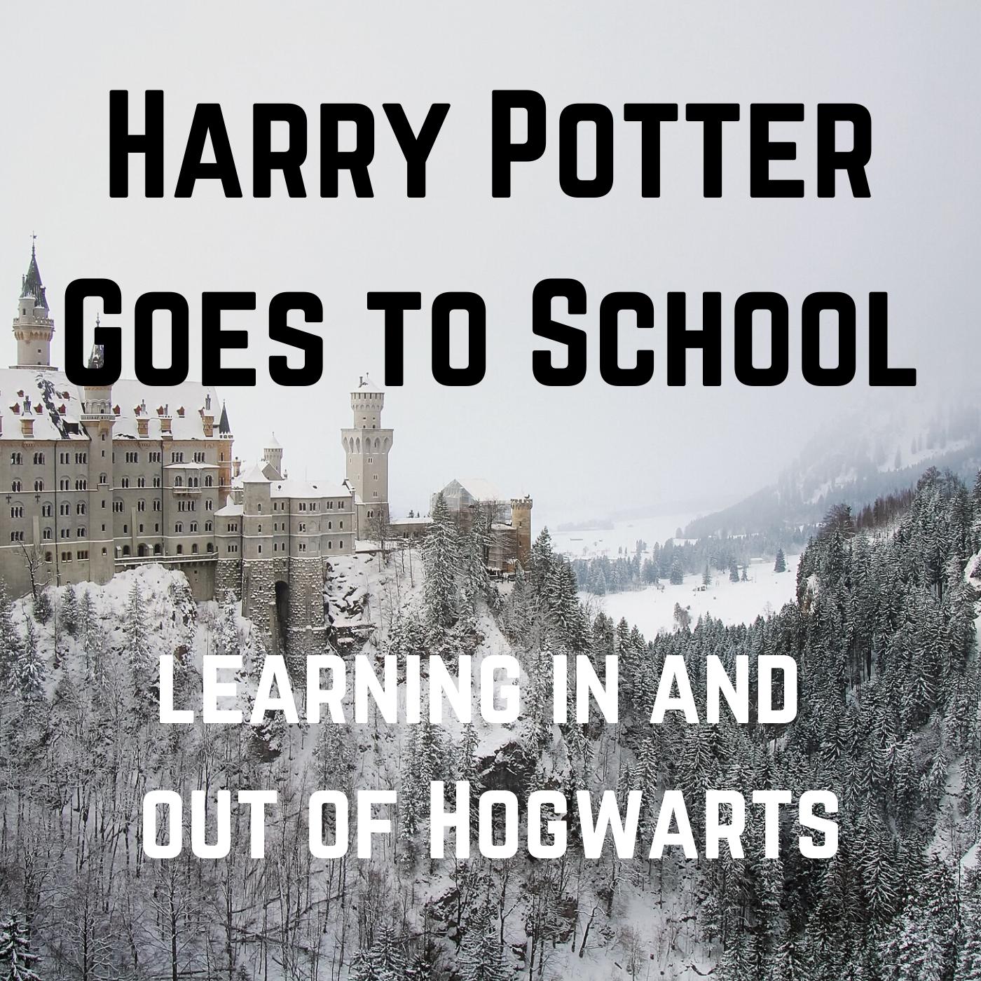 Harry Potter Goes to School show art