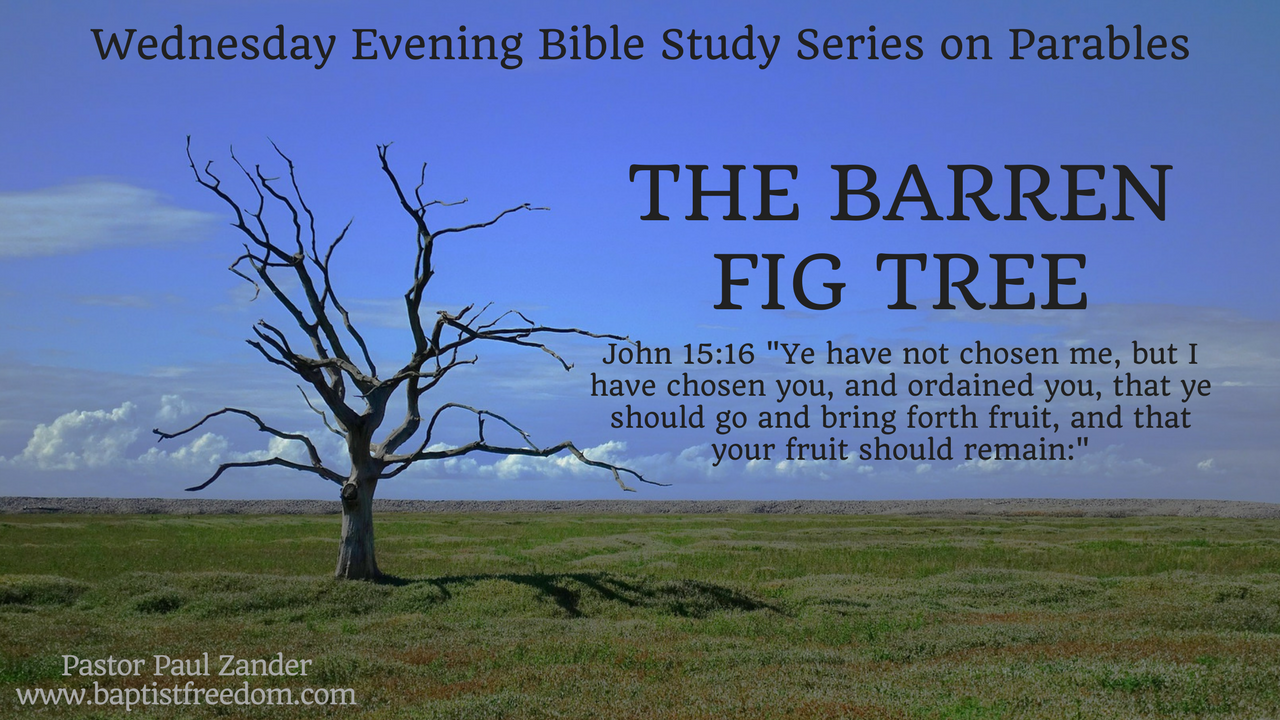 Artwork for The Barren Fig Tree