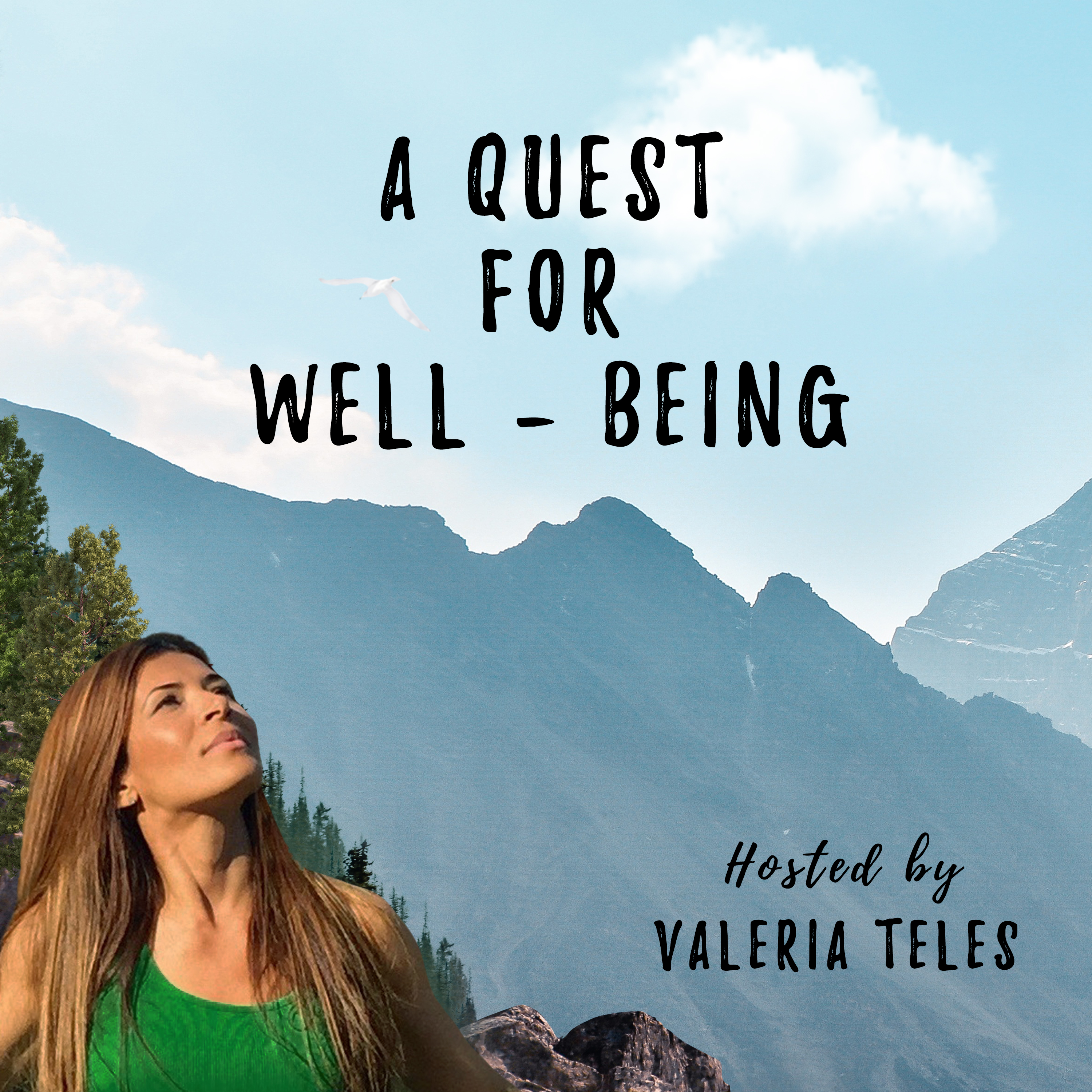 A Quest for Well-Being show art
