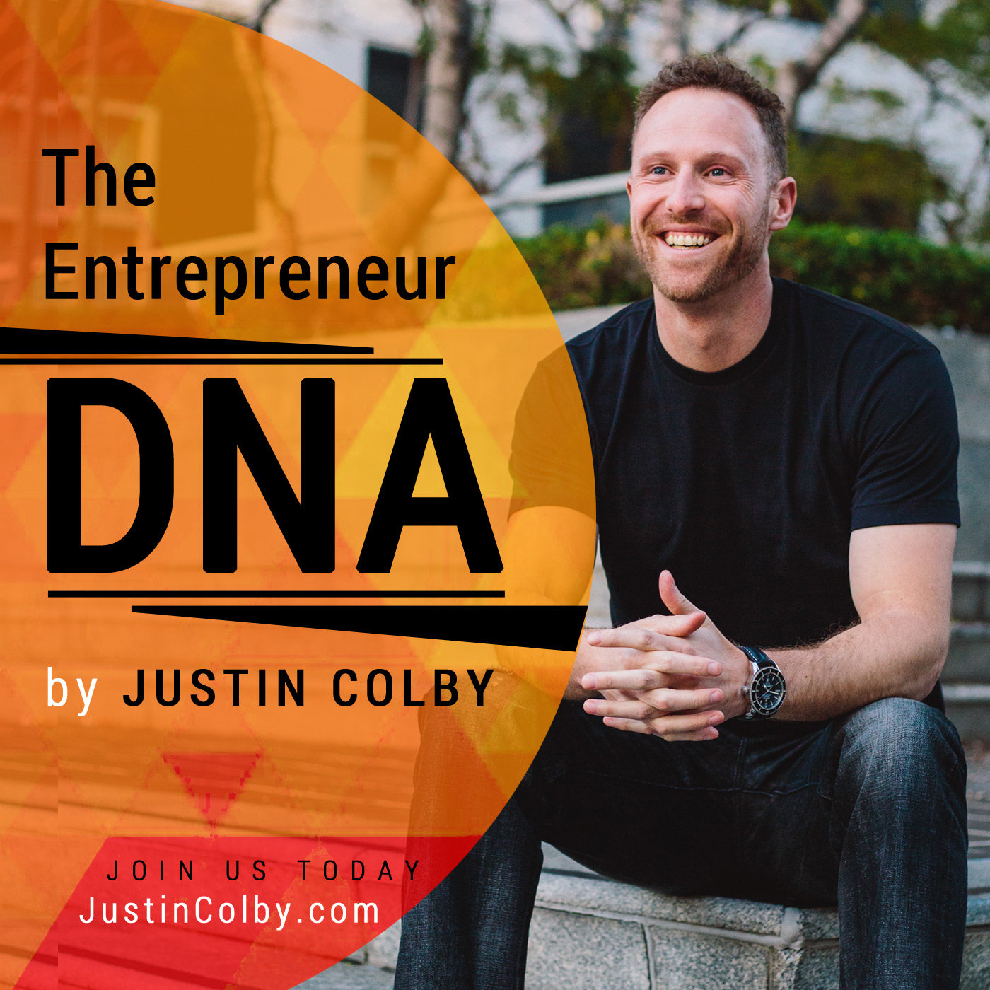 The Entrepreneur DNA show art