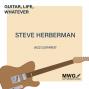 Artwork for Steve Herberman - Episode 47