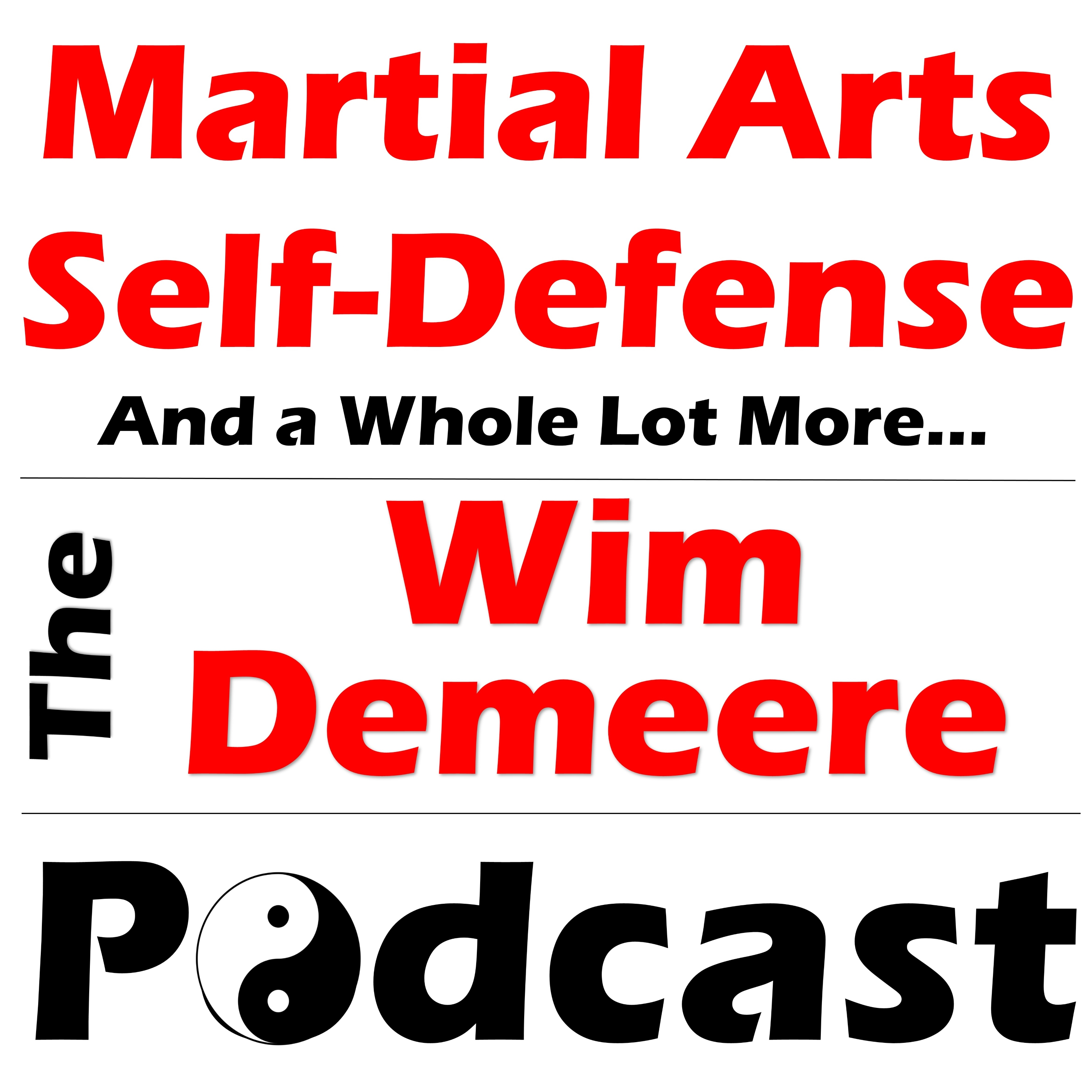 WDP 036: How to argue martial arts and self-defense?