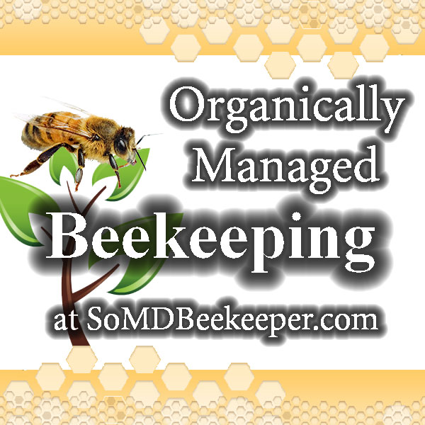 Podcast Episode 23 – The Practical Beekeeper – Michael Bush!