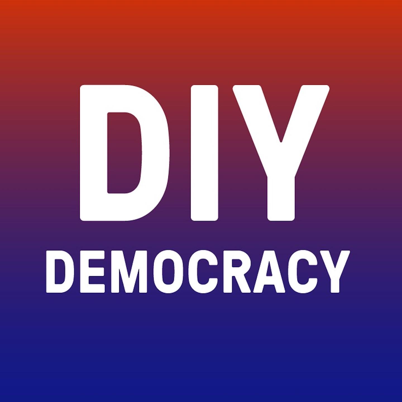 DIY Democracy show art