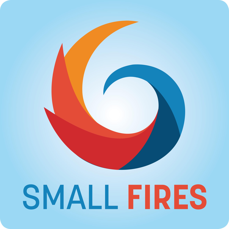 Small Fires show art