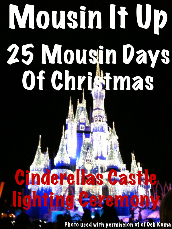 25 Mousin Days of Christmas - Cinderellas Castle Lighting ceremony