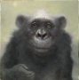 """Artwork for #22: Chris Leib """"Why Humans Paint With Whiskers"""""""