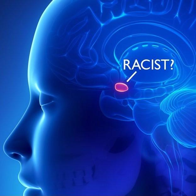 Artwork for Ep. 12: Neuroscience of Racism