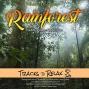 Artwork for Back To Sleep Meditation- Rainforest Edition
