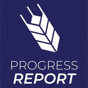 The Progress Report