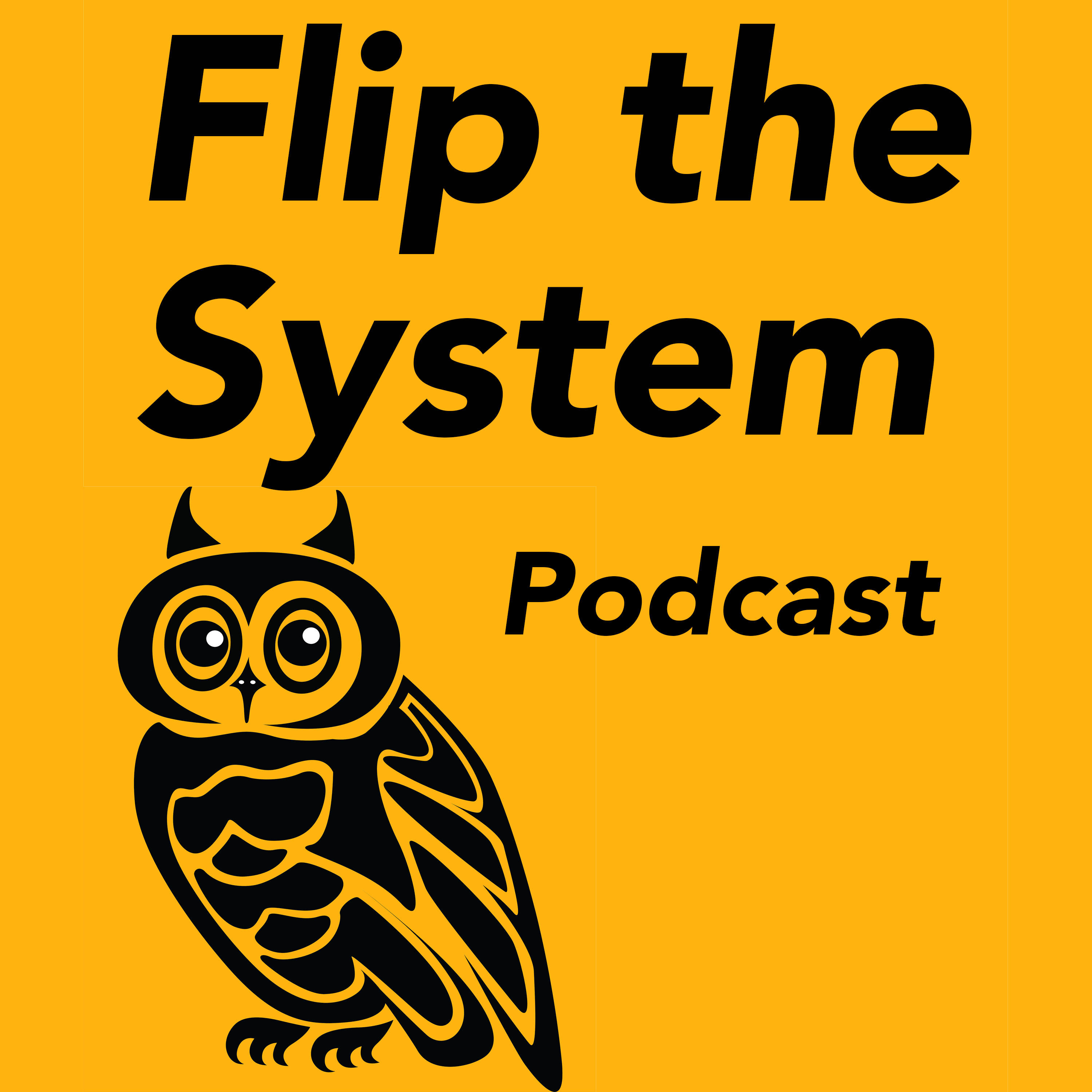 Flip the System Podcast show art