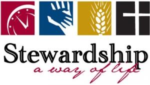 FBP 474 - Stewardship