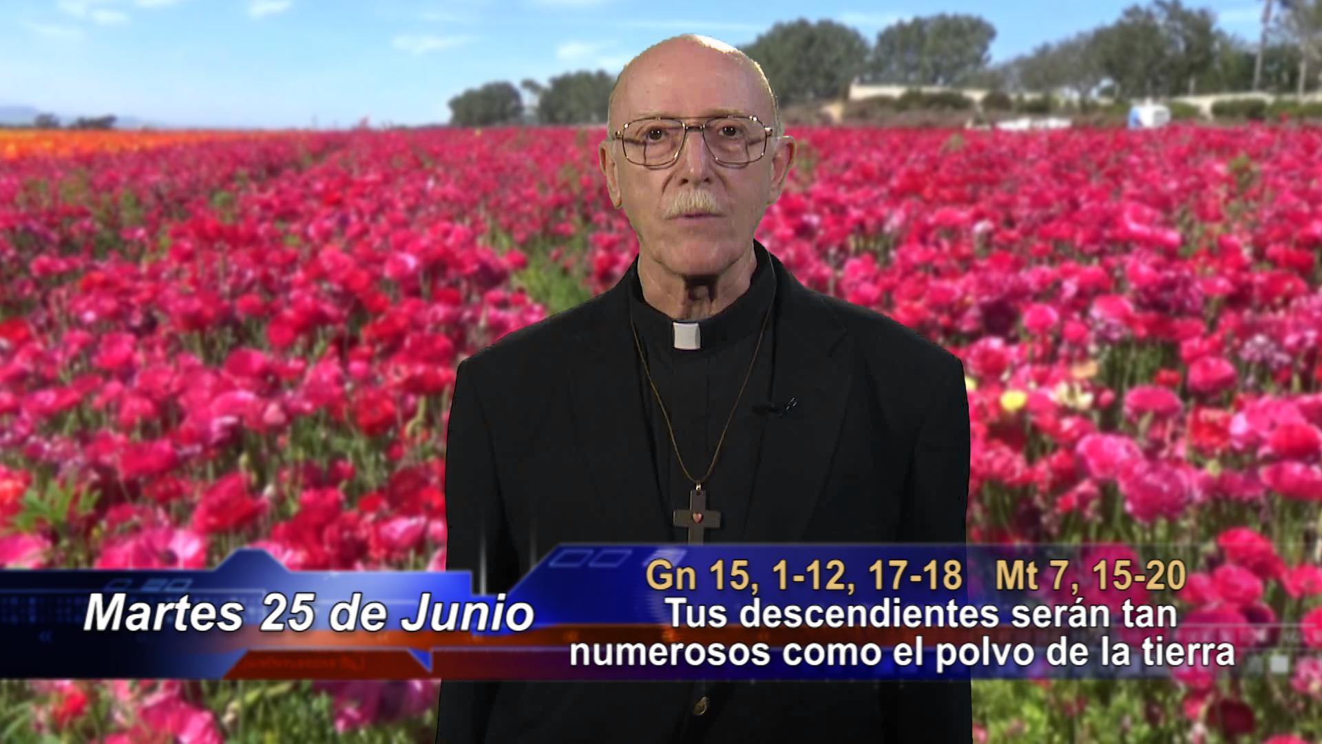 Artwork for Dios te Habla con Fr. Lenny de Pasquale;