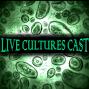 Artwork for Episode 63: Seven Samurai