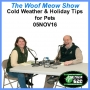 Artwork for Cold Weather and Holiday Tips for Pets-2016
