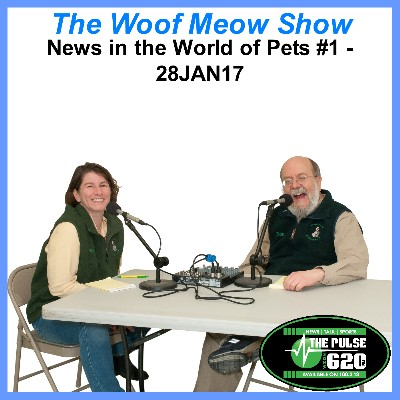 News in the World of Pets #1